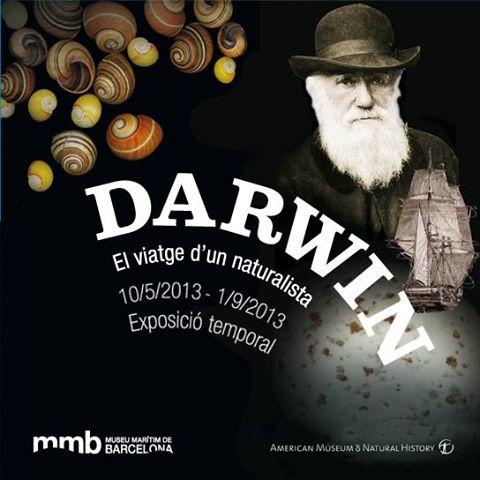 drwin2