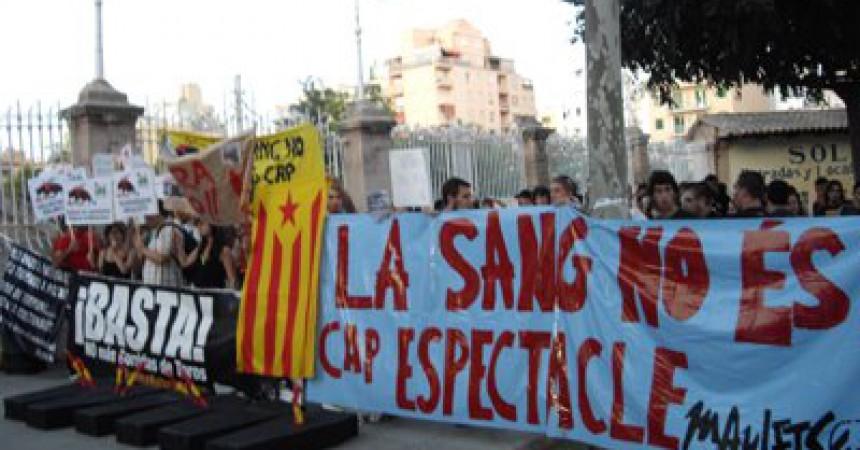 L'independentisme de Mallorca, pioner en la lluita contra la tauromàquia espanyola
