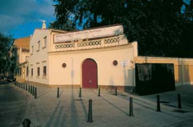 Els impagaments de les administracions fan tancar el Museu Valencià d'Història Natural