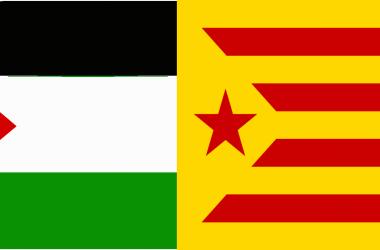 Crida de personalitats de la cultura catalana contra l'atac israelià a Gaza