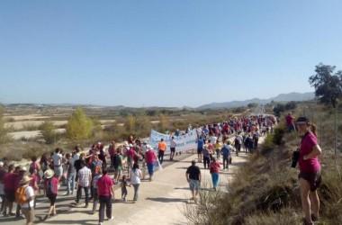 Prop d'un miler de persones a la marxa contra la planta de residus animals de la Vall d'Albaida