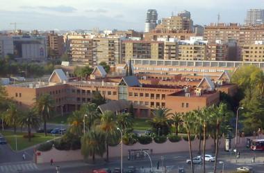 INFORME LLEI DE SENYES (I): La defensa del valencià i la política lingüística de la Generalitat