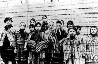 De silencis i oblits. 70 anys de l'alliberament d'Auschwitz