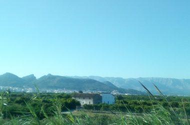 L'ocàs del reg a manta en el tram baix del riu d'Alcoi (Horta de Gandia, la Safor)