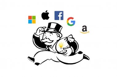 El capitalisme de monopolis intel·lectuals i els seus efectes sobre el desenvolupament